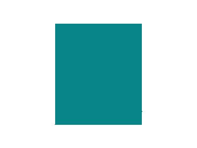 Noise Bag